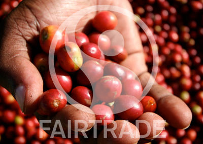 Why we are NOT Fair Trade or Organic certified